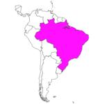 日本語でブラジル/ブラジリア Brazil / Brasilia in Japanese