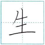 漢字を書こう 楷書 生[sei] Kanji regular script