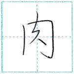 少し崩してみよう 行書 肉[niku] Kanji semi-cursive 1/2
