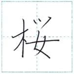 漢字を書こう 楷書 桜[ou] Kanji regular script
