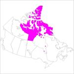 日本語でヌナブト準州 Nunavut in Japanese