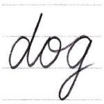"""筆記体で書こう """"dog"""" & """"cat"""" in cursive"""