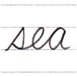 筆記体で書こう sea / see in cursive
